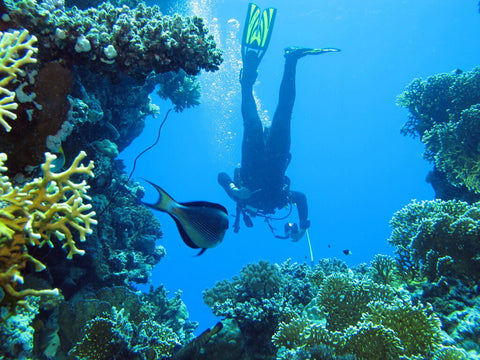 scuba-diving-location