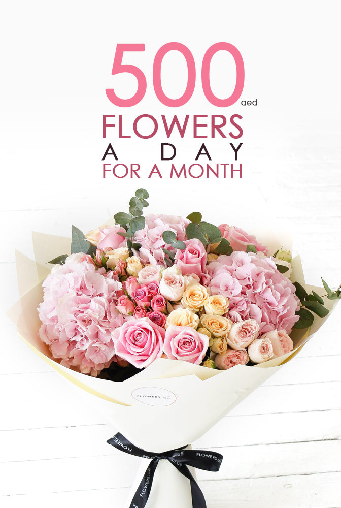 500 AED of flowers a day for a month