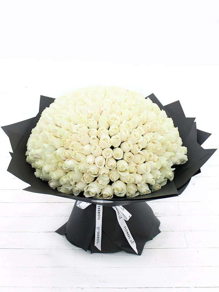 365 Long Stem White Rose Hand-tied