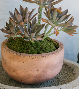 Deep Bowl Planter