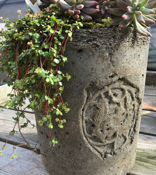 Planter with Vintage Squirrel Medallion
