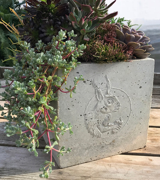 Red Squirrel Cameo Planter