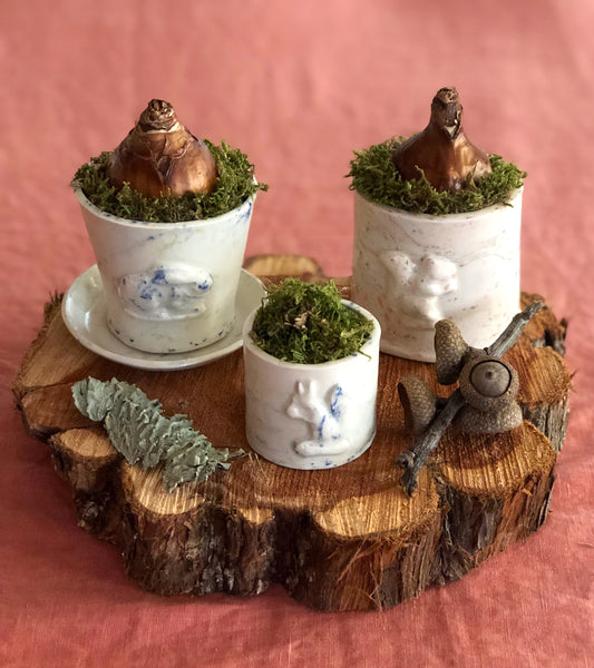Squirrel Micro Planter / Confetti