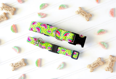 Watermelon Dog Collar - Girl Dog Collar - Cute Cat Collar - Summer Dog Collar - Fruit Dog Collar - Cat Breakaway Collar - New Pet Gift