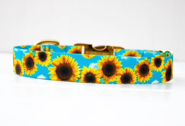 Sunflower Dog Collar - Webbing Dog Collar - Fall Dog Collar - Girl Dog Collar - Dog ID Collar - Autumn Dog Collar - Cute Pet Collar