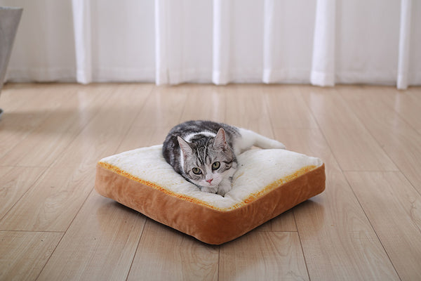 Soft Durable Pets Mat Toast Bread and Poached Eggs Shape - Pets Utopia