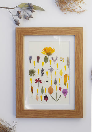 """LITTLE GARDEN "" FRAMED HANDMADE PRESSED FLOWER ART (A4) - laflorproject"