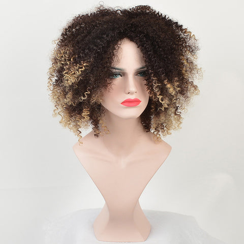 African Curl Synthetic Wig - 50% Off!