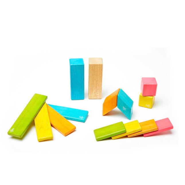 Tegu - 14 Piece Magnetic Wooden Block Set