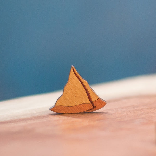 Samosa with fillings - hand painted pin