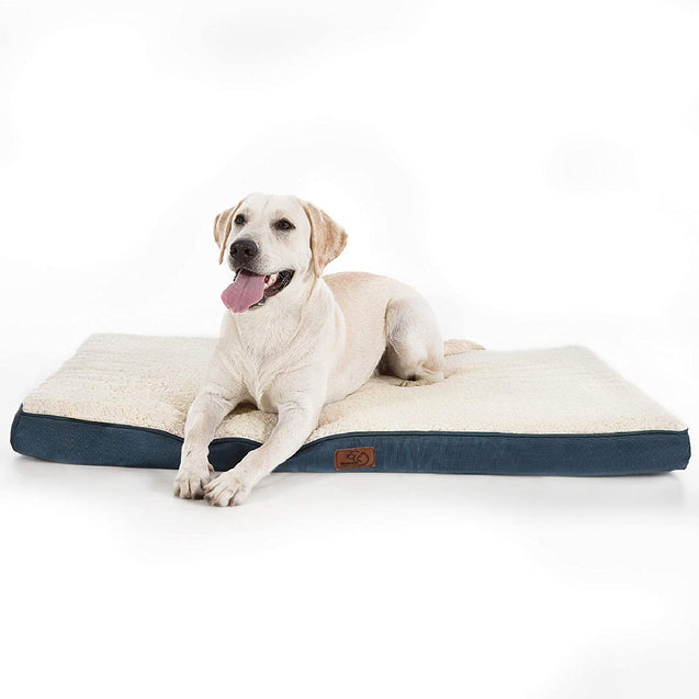 a dog on the Bedsure Orthopedic Dog Bed