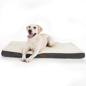 dog on the Bedsure Orthopedic Dog Bed