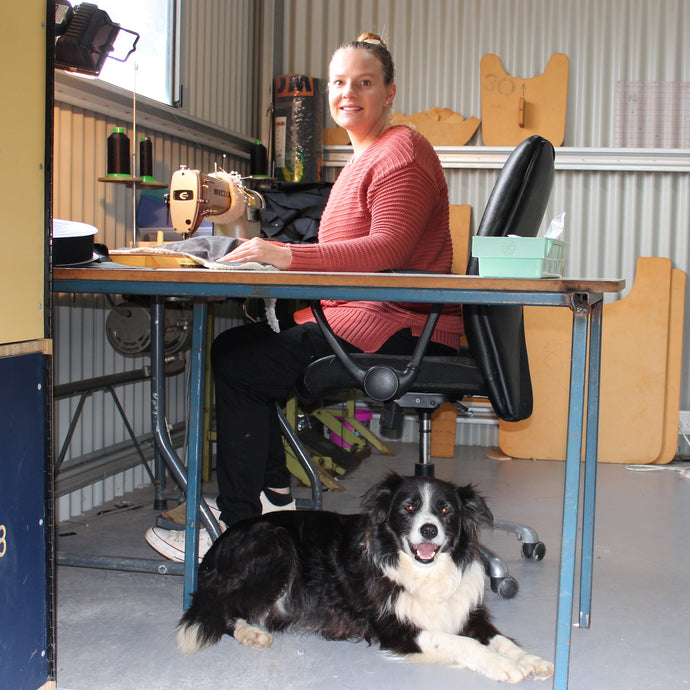 3# Reasons to have a Pet on Staff