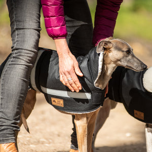 Waterproof Dog Coat -- Whippet / Lurcher / Italian Greyhound Coats