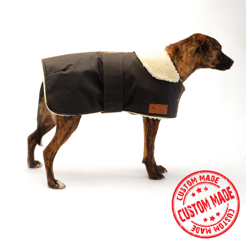 Custom Made - Waterproof Dog Coat - Collar Design