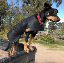 Load image into Gallery viewer, Waterproof Dog Coat -- Regular Design