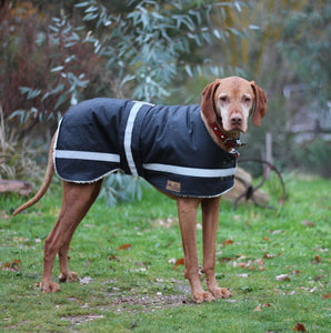 Waterproof Dog Coat - Regular Design