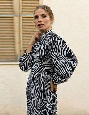 Wild Zebra Print Dress In white
