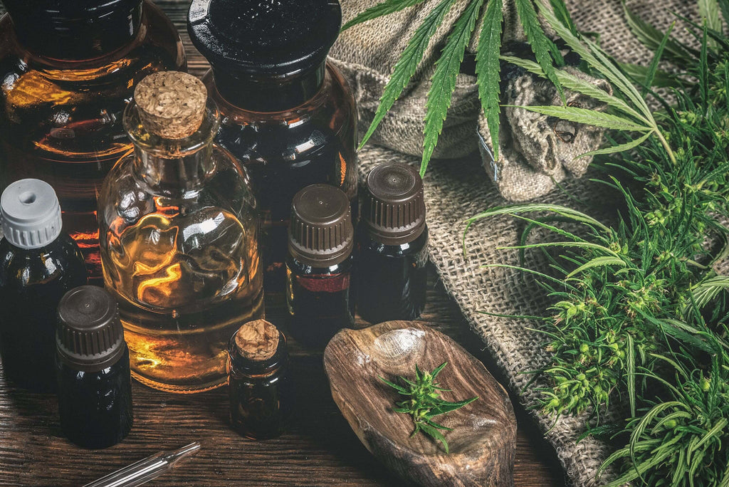 CBD oil bottles and cannabis plant
