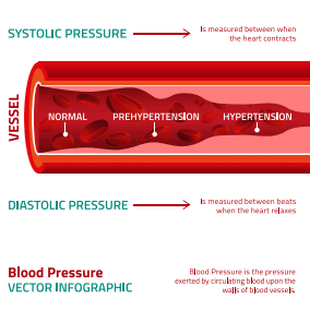 graphic showing how to measure blood pressure
