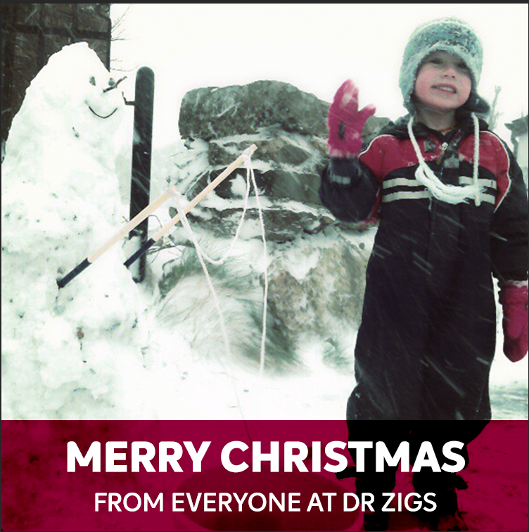 Merry Christmas and Happy New Year from all of us at Dr Zigs