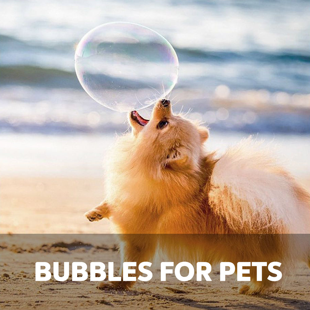 pets fur dogs cats lovers toys for pets perfect christmas gift sale discount price low price bubble mix eco ethical fun eco toys fun under £20 gift for boys and girls children toys outdoor indoor toys wooden toys stocking filler secret santa