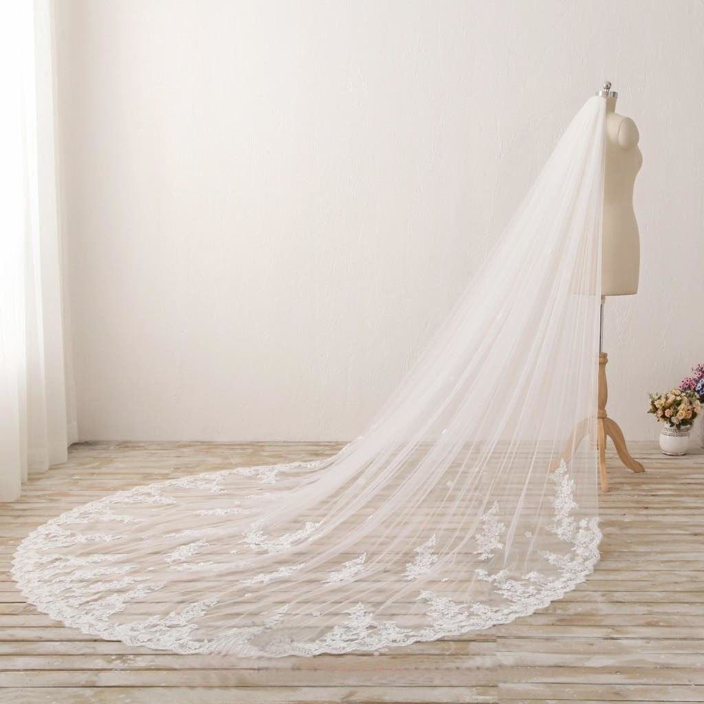 3M Long Embroidered Lace Appliques Tulle Cathedral Veil for Wedding Wedding Veil JS869