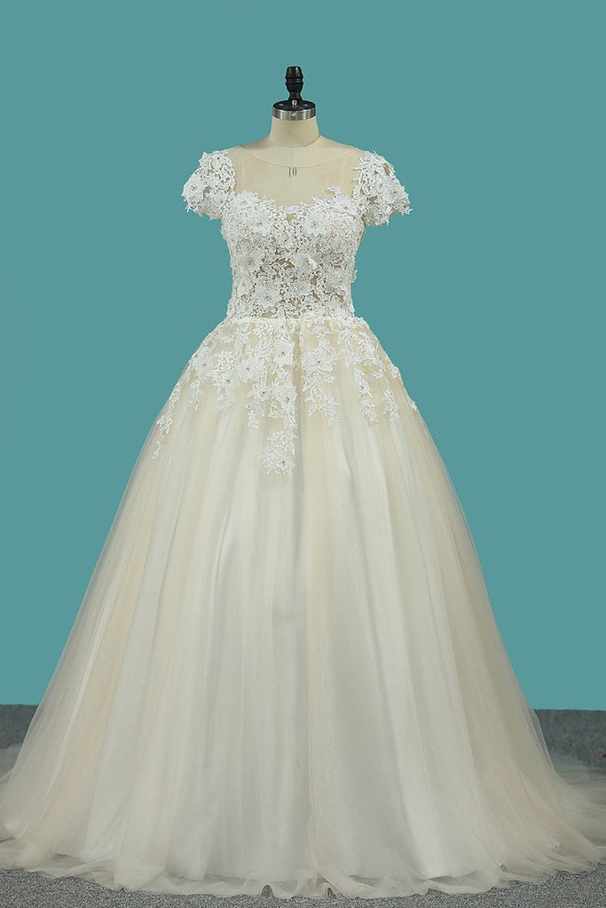 Scoop Short Sleeve With Applique Tulle Court Train Wedding Dresses
