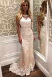 Charming Lace Mermaid Long Sexy Sleeveless Beading See Through Prom Dresses JS149