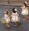 A line Long Sleeve Lace Flower Girl Dresses Above Knee Scoop Bowknot Baby Dress JS546