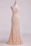 New Arrival Off The Shoulder Evening Dresses Lace With Applique & Beads