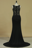 Prom Dresses Sheath/Column Spaghetti Straps With Beading And Applique Spandex & Tulle
