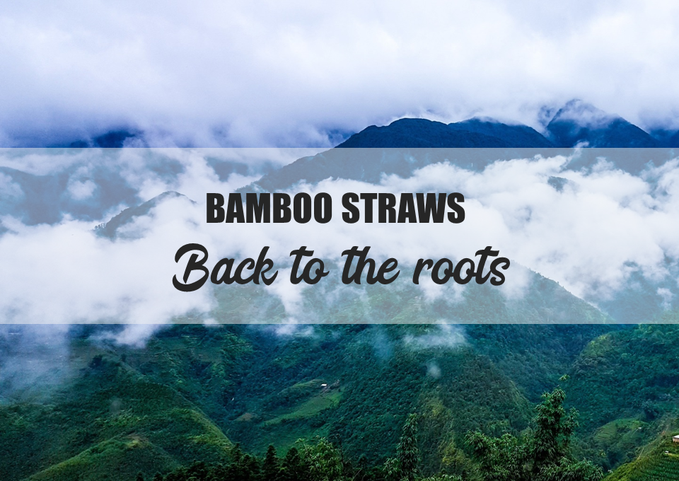 Back to the roots of your bamboo straw