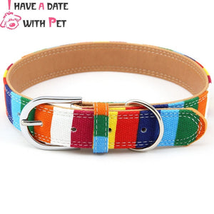 Padded Big Dog Collar Canvas&Leather