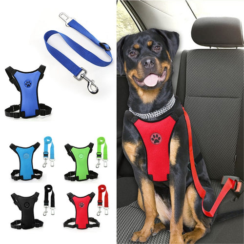 Adjustable Safety Dog Car Seat Belt Harness and Leash