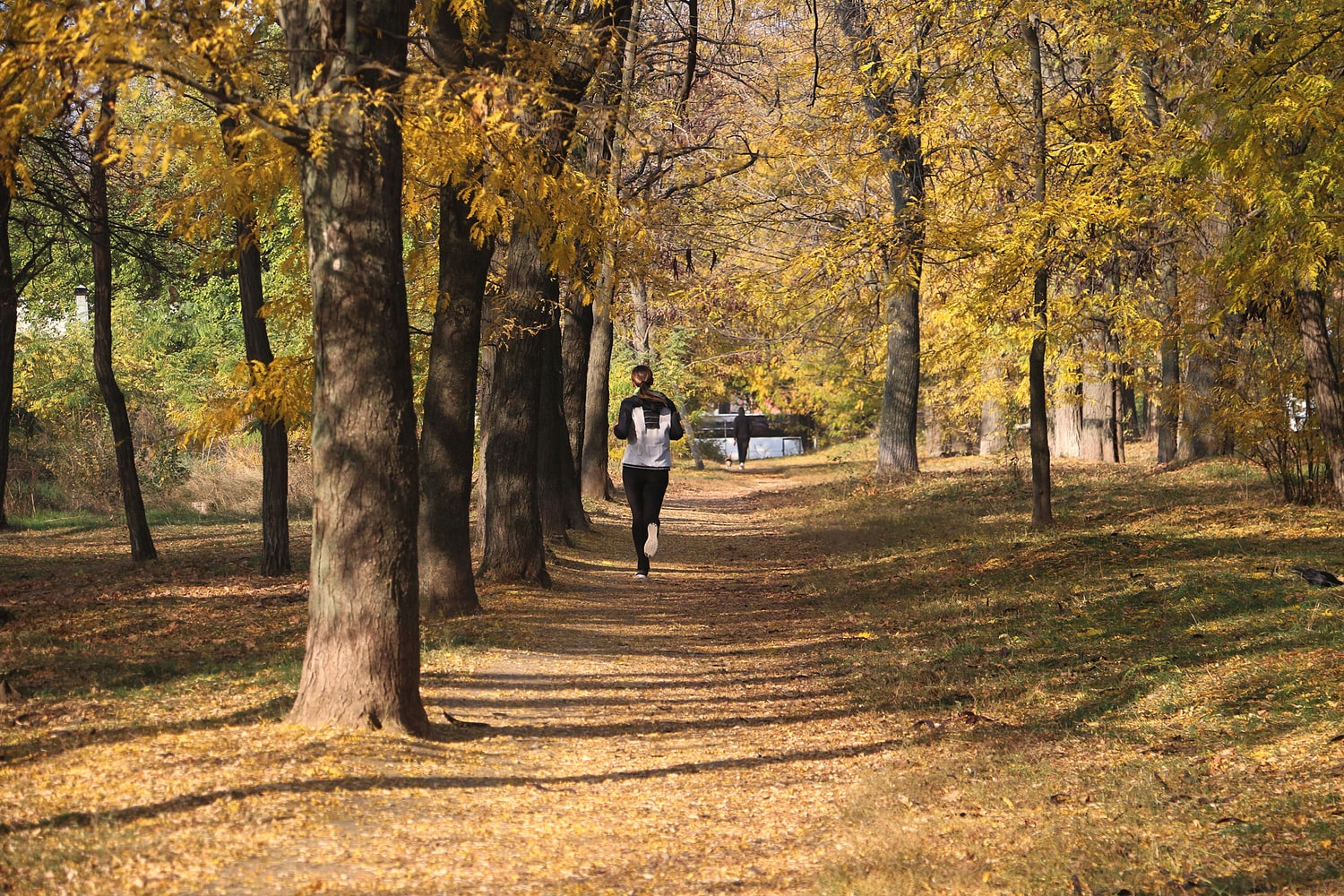 Tips For Working Out During Fall & Winter