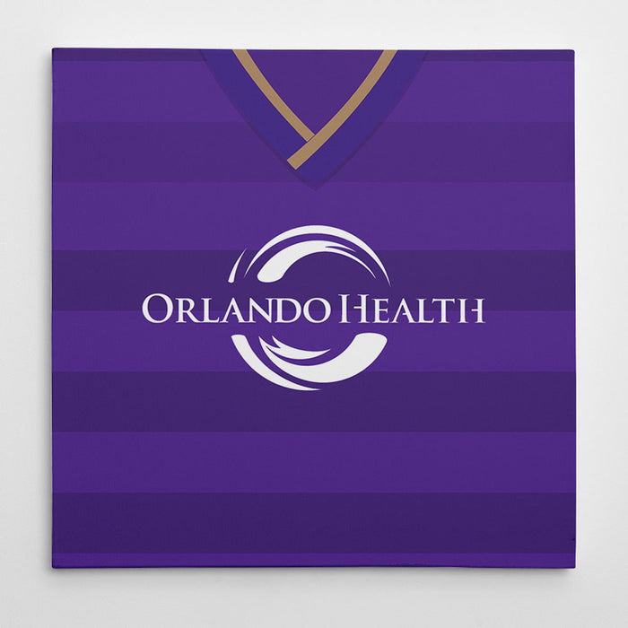 Orlando City 2015 Canvas Print