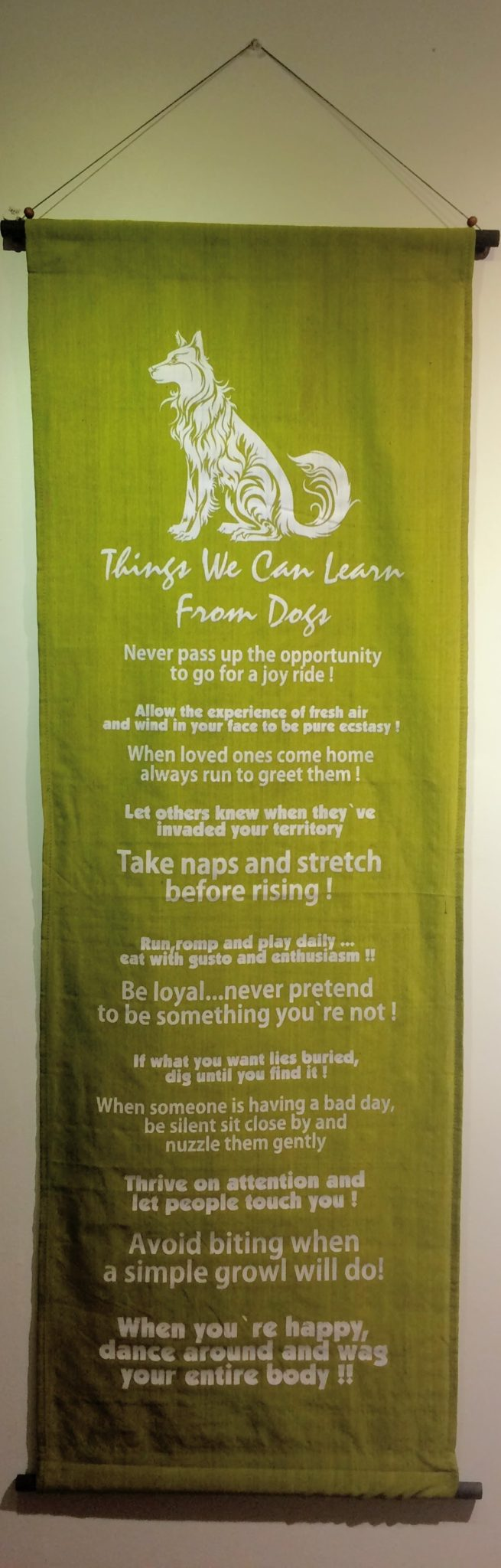 Things We Can Learn From Dogs Banner