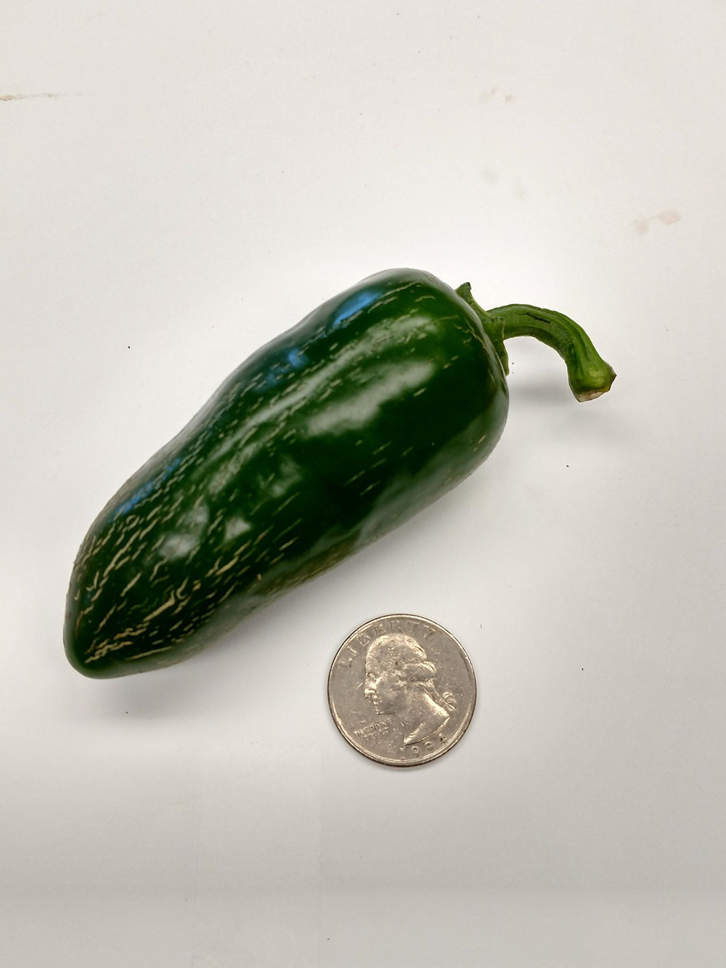 Jalapeno - Biker Billy (1 lb)