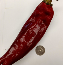 Load image into Gallery viewer, Sweet Sampler (Peppers, 5 lb)