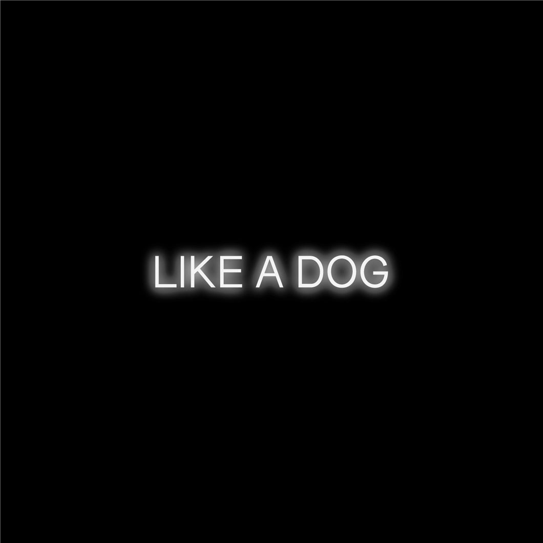 Ricardo Romero - Like A Dog