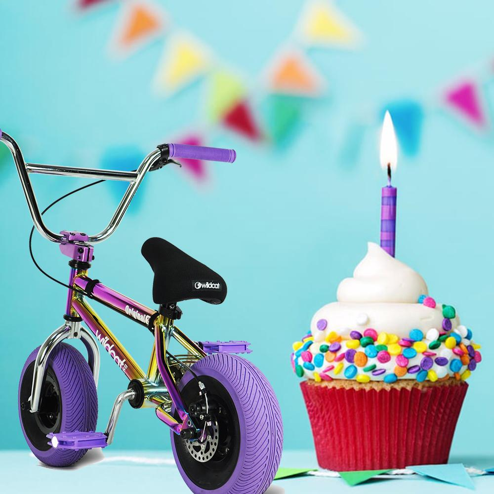 Happy 1st Birthday Wildcat Mini BMX USA