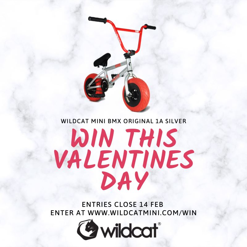 The winner of the Wildcat Valentine's Day competition is...
