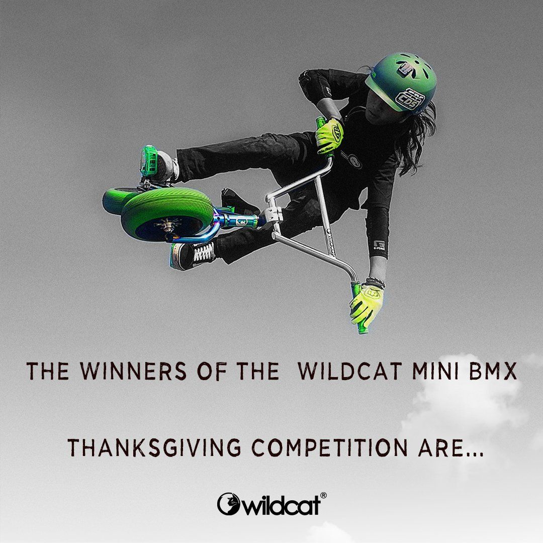 The Winners of the Wildcat Mini BMX Thanksgiving competition are