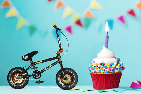 Wildcat Mini BMX 1st Birthday