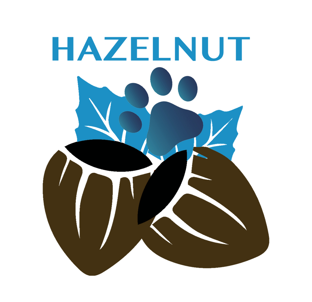 HAZELNUT for SENIOR DOGS