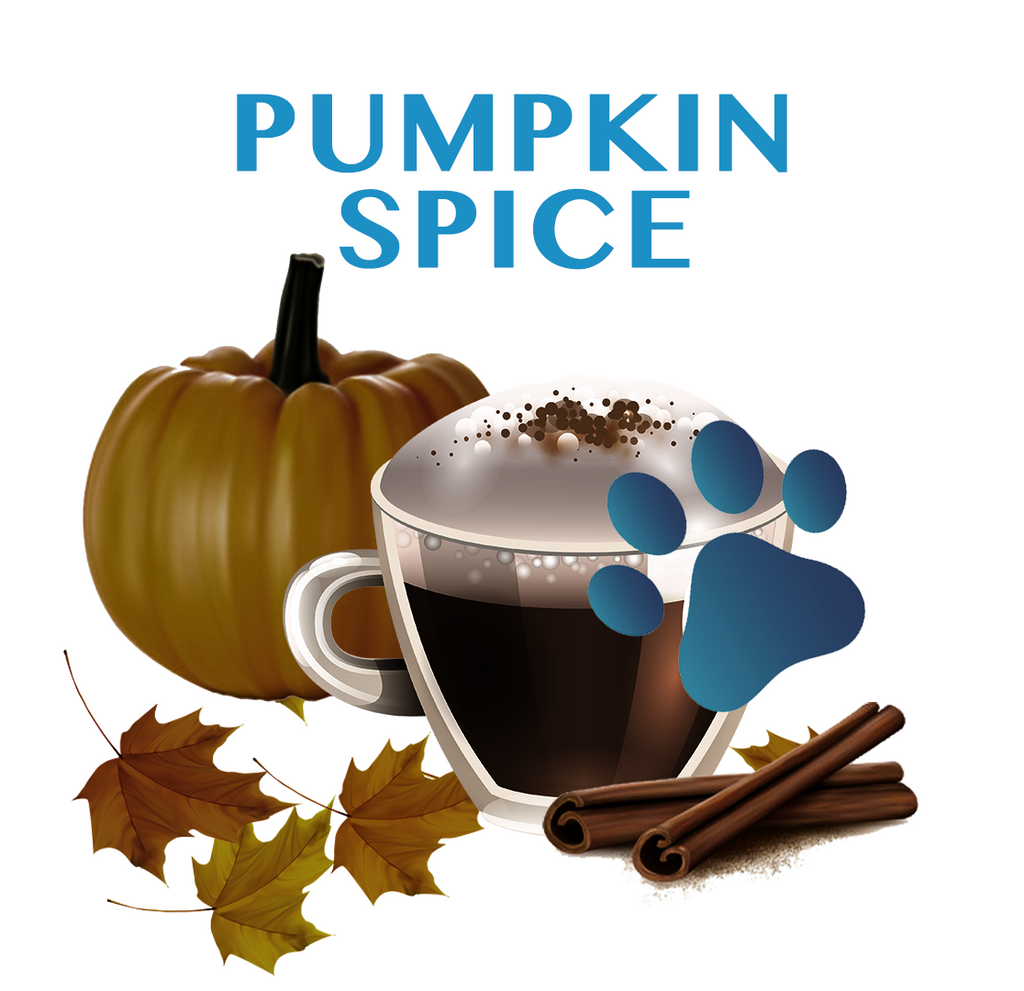 PUMPKIN SPICE for SENIOR DOGS