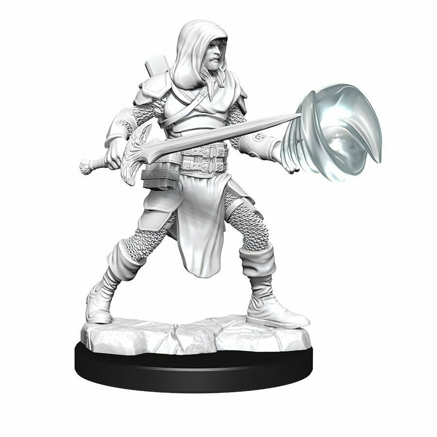 D&D Nolzur's Marvelous Unpainted Minis13: Multiclass Fighter/Wizard Male New