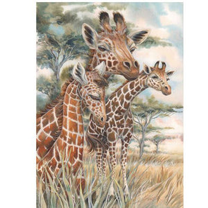 Giraffe ---5D Diamond Painting