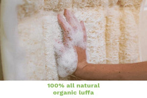 Hands-free, refreshing exfoliation for your back